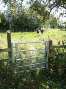 Tring Boundary Trail 3