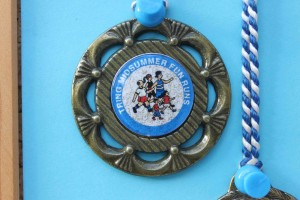 Fun Run medal 2001